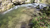 musgoso : Wild stream in Pyrenees, Aude in southern France