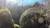 bloklar : Granite block in Pyrenean forest, Aude in southern of France Stok Video