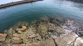 roques : Water surface of mediterranean sea at Collioure,  Pyrenees orientales in southern of France