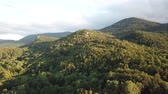 pyrenees : Aerial view of pyrenean forest filmed with drone, Aude in southern of France