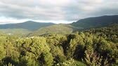 aerial view of  forest in Pyrenees, Aude in southern of France Stock Footage