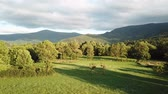aerial view of meadow and forest in Pyrenees, Aude in southern of France Stock Footage
