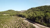 vinho : Aerial view of french vineyard in Aude, Languedoc in the south of the France