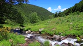 pirineus : mountain stream in the Pyrenees, Ariege in the south of France