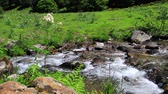 pyrenees : mountain stream in the Pyrenees, Ariege in the south of France