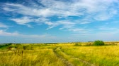 Meadow on the banks of the Vistula river. 4K timelapse. Stock Footage