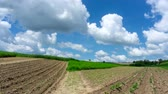 Timelapse. Cultivated fields relating to flowing clouds on the blue sky.