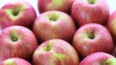 dairesel : Close up of organic Fuji apples.