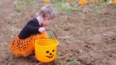 nemluvně : Toddler in Halloween costume playing at the pumpkin patch.