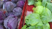 herbaceous : Organic produce at the local Farmers Market.
