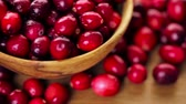 dairesel : Organic fresh cranberries in season.