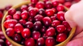 yuvarlak : Organic fresh cranberries in season.
