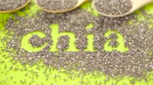 dokulu : Healthy Chia seeds with shia sign close-up. Stok Video