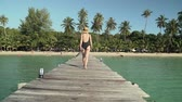 hot water : Young caucasian woman in swimsuit and straw hat happily walks along wooden jetty pier to tropical island coast sandy beach and green palm trees, bushes and foliage on bright sunny day. Slow motion.