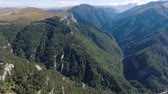 high plateau : Deep mountain gorge. Wooded valley. Aerial view.
