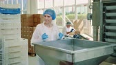 оператор : Candy factory. Factory worker checking packing machine.