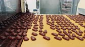 塗布器 : Candy factory. Conveyor with chocolate candies.