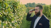 medir : Man on vineyard with refractometer standing on green vineyard
