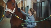 equestrian sport : Young woman taking care of horse and brushing fur before taking ride