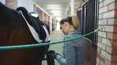 koňmo : Young woman preparing horse for training and fixing saddle on back standing in stable.