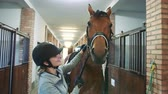 riders : Woman caressing beautiful horse in stable