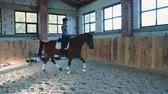 riding arena : Woman on horse walking slowly on arena. Stock Footage