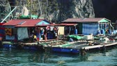 sea : Floating Fishing Village In The Ha Long Bay. Cat Ba Island, Vietnam.