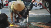 pes : Shot of Asian women washing his dog in the street in Hanoi, Vietnam Dostupné videozáznamy