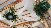 servir : Plants hanging from ceiling