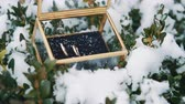 jewelry box : Wedding rings in a glass box in the snow.