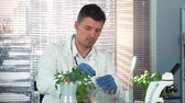 plant fertilizer : In a chemistry laboratory research scientist mixing two compounds in flask using pipette and then giving it to his colleague.