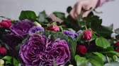 fragilidade : Florist puts beautiful roses for the arrangement of a modern bouquet