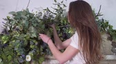 klenba : Female florist stands at a height with eucalyptus branches in her hands and decorates flowers on beautiful wooden gates Dostupné videozáznamy