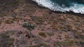 горы : Aerial View - Volcanic Coast Tenerife, Spain