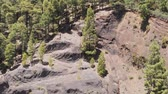 scenérie : Drone rises up - a centuries-old rock cut and coniferous forest