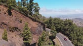 scenérie : Road through the forest with tall trees, serpentine in the mountains of Tenerife, Spain. Cars move along a ridge, aerial view