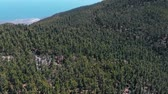 scenérie : Aerial Flight over Teide National Park, observation deck, coniferous forest and ocean