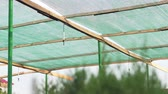 irrigação : Hydroponic system used automatically outdoor. Environmentally friendly production