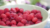 밝게 : A lot of fresh raspberries in rotating bowl. Closeup 무비클립