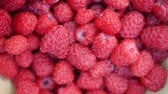 amoras : A lot of fresh raspberries in rotating bowl. Closeup Vídeos
