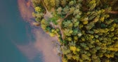 ekologia : Aerial drone top view of forest and coniferous trees in the north. Russian landscape with pines and fir, sunny day in wild nature. The Gulf of Finland. Baltic Sea. Concept for traveling tourists.