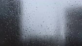 bubble : Rain, Large rain drops strike a window during a shower Stock Footage