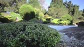 шуй : The Japanese Gardens in Toowoomba, QLD. Featuring waterfalls, red bridges, animals and ponds.