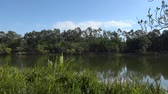 퀸즐랜드 : Springfield Lakes in Ipswich City, Queensland, Australia during the day.
