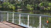 queensland : Springfield Lakes in Ipswich City, Queensland, Australia during the day.