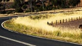 на линии : Windy rough road out in the countryside of Gatton, Queensland.