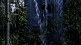 Curtis Falls waterfall located in the Joalah Section of Tamborine National Park which is apart of the Gold Coast Hinterland, Queensland. 무비클립