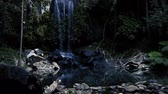 el değmemiş : Curtis Falls waterfall located in the Joalah Section of Tamborine National Park which is apart of the Gold Coast Hinterland, Queensland. Stok Video
