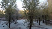 güneş : View from the window of the house. First snow.