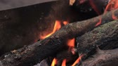 Charred wood in the fire. Burning wood in flames. Stock Footage